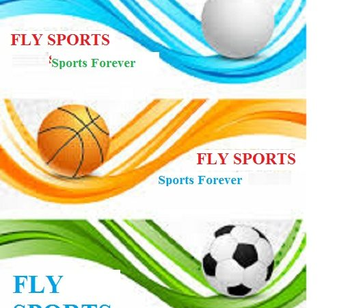 FLY SPORTS