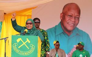 Tanzania prez accused of 'revisiting' mafia tactics of predecessor